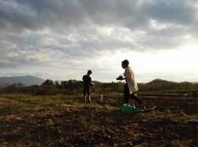 Kasara farm