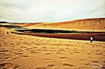 Dans le désert japonais