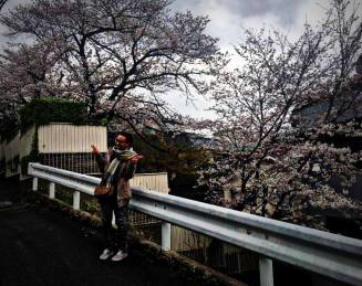 Au Japon